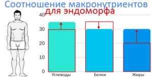 Эндоморф. Соотношение БЖУ