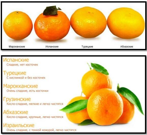 мандарины по стране произрастания