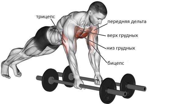 Разведение рук лежа лицом вниз, мышцы