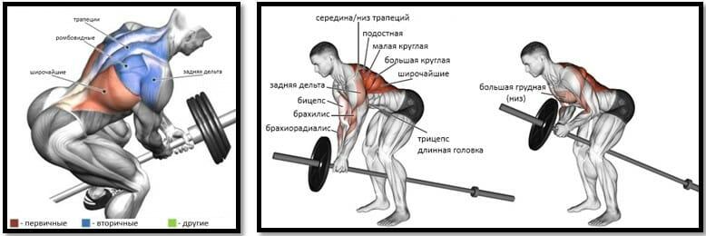 Тяга штанги за один конец мышцы