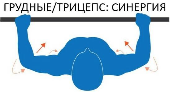 Жим штанги лежа, грудные и трицепс синергия