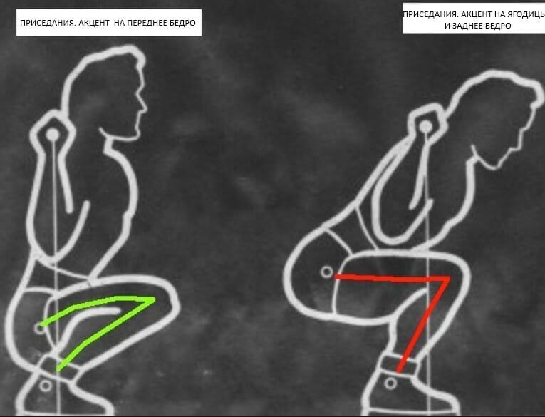 приседания со штангой, разные акценты на мышцы