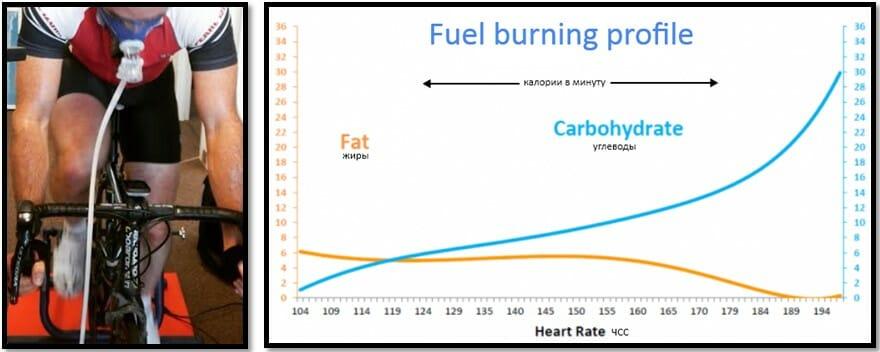 Оценка расхода калорий по показаниям кардиомонитора