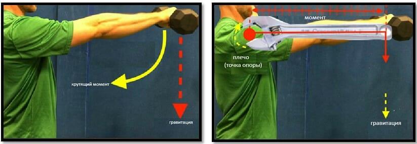момент силы упражнение подъем гантели перед собой