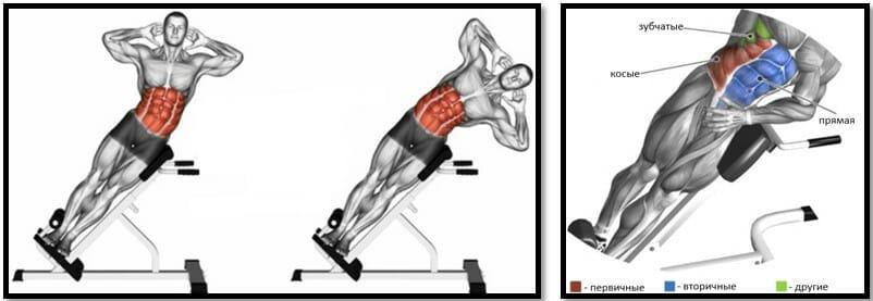 Боковая гиперэкстензия, мышцы