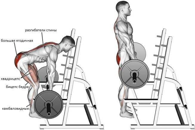Становая тяга с плинтов, мышцы