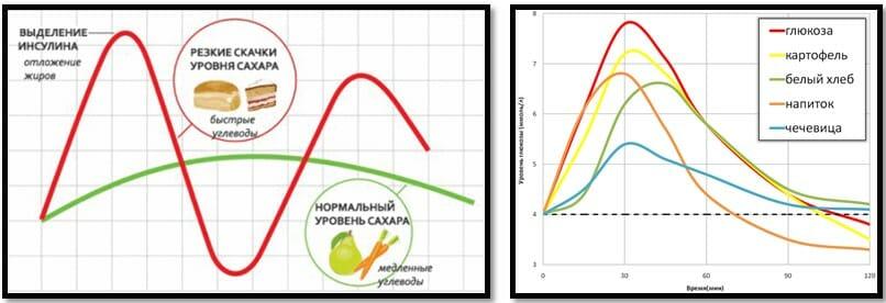 углеводы и уровень сахара в крови