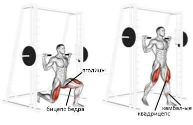 Выпады в Смите мышцы