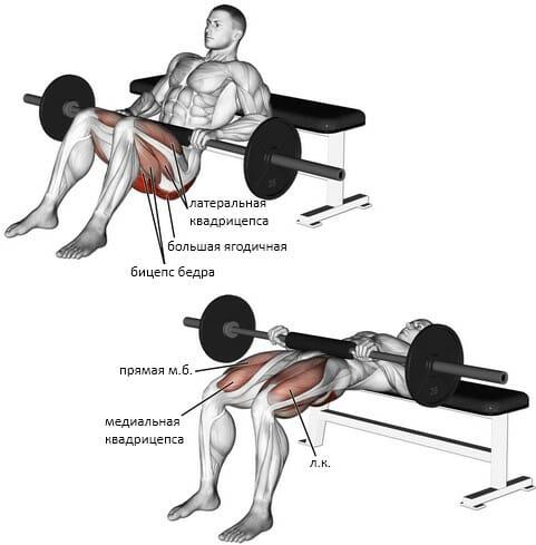 Ягодичный мостик в Смите мышцы