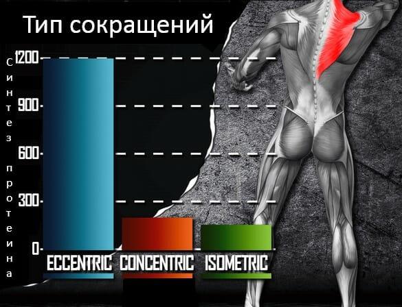тип сокращений и мышечные повреждения