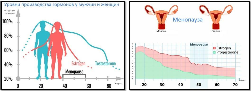 уровни гормонов у м и ж. менопауза