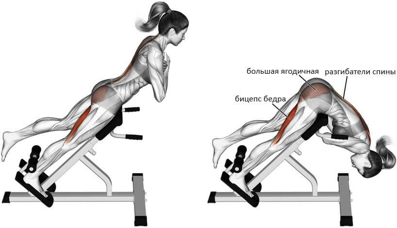 Гиперэкстензия одной ногой мышцы