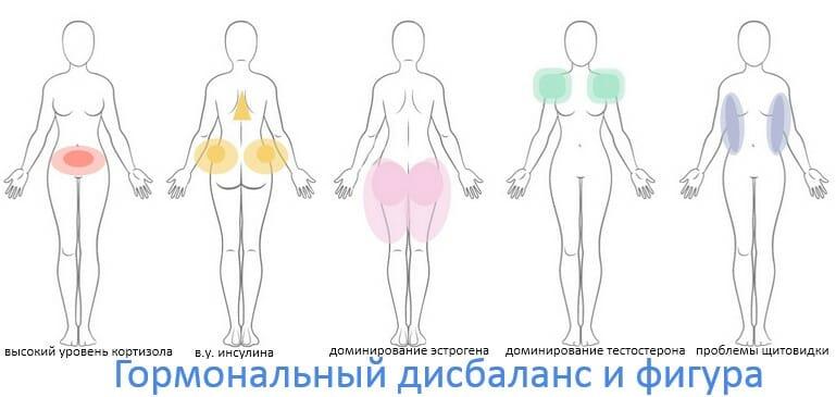гормональный дисбаланс и последствия для фигуры