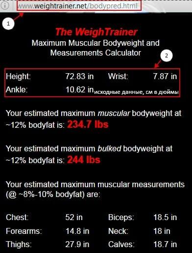 онлайн-калькулятор мышечного потенциала
