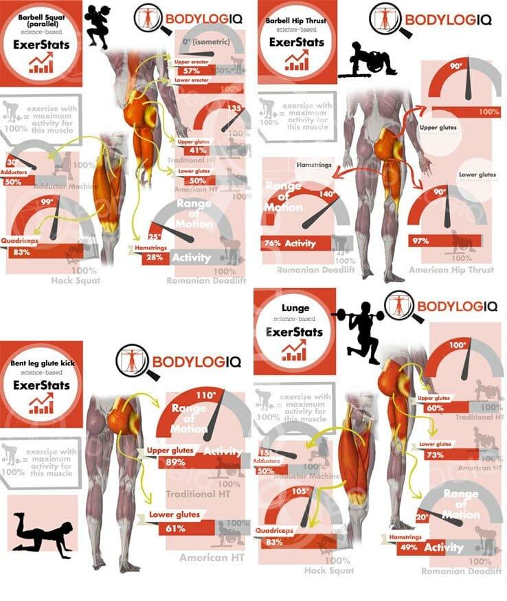 упражнения для ягодиц, диапазон движения и активация