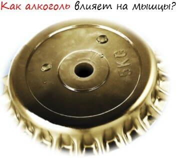 Kak-alkogol-vliyaet-na-myishtsyi-logo-2 Как алкоголь влияет на мышцы лого 2