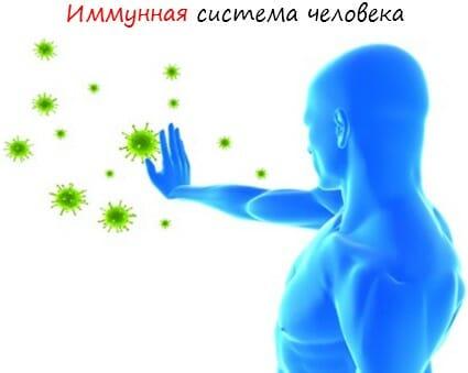 Иммунная система человека лого