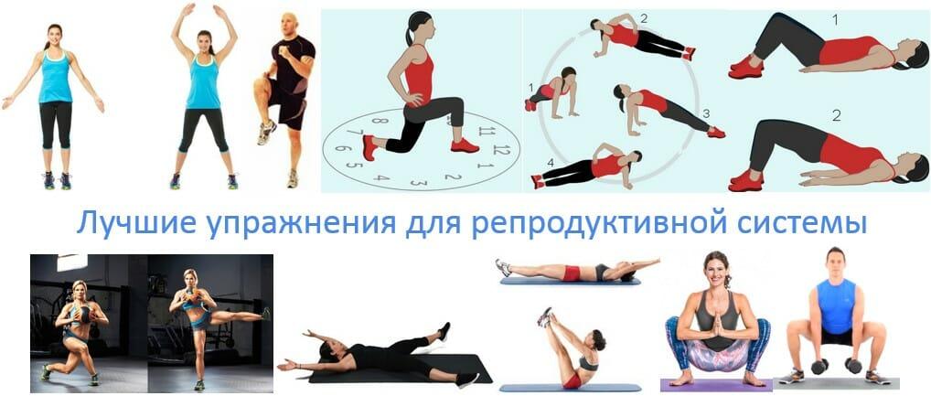 Лучшие упражнения для репродуктивной системы