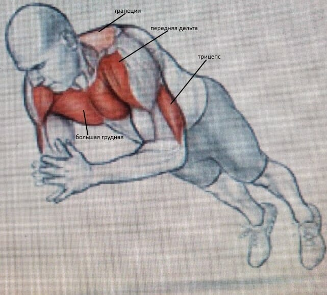 Отжимания с хлопком мышцы