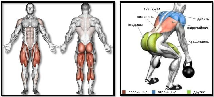 Становая тяга с гирей мышцы