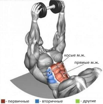 Подъем туловища со штангой в вытянутых вверх руках мышцы