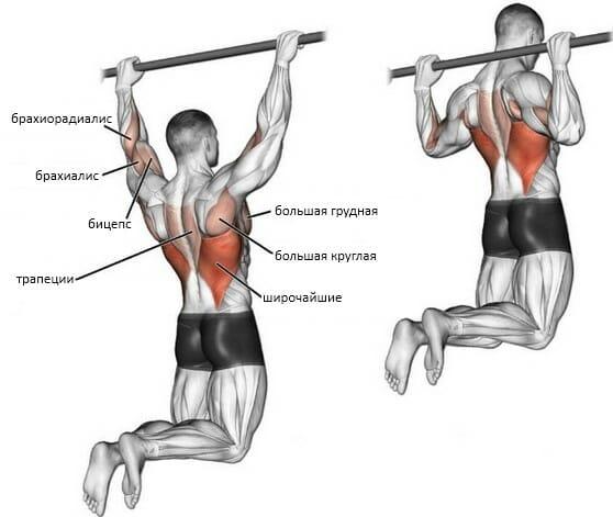 Подтягивания за голову мышцы