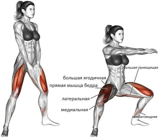 Сумо приседания у нижнего блока мышцы