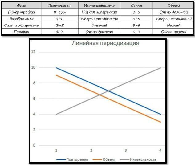 линейная периодизация в бодибилдинге