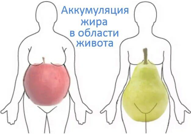 типы фигур, яблоко и груша, жир на животе