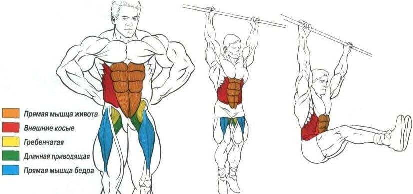подъем ног в висе мышцы os