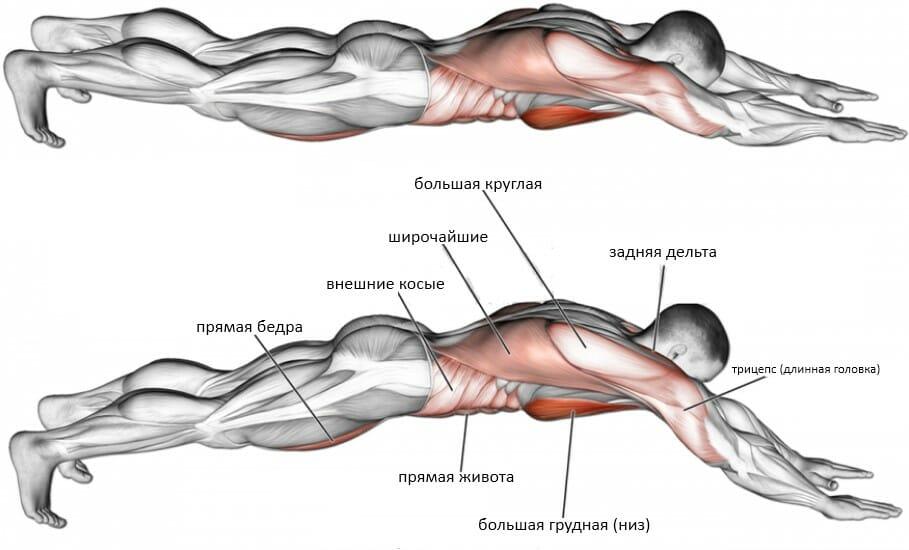 Отжимания супермен мышцы