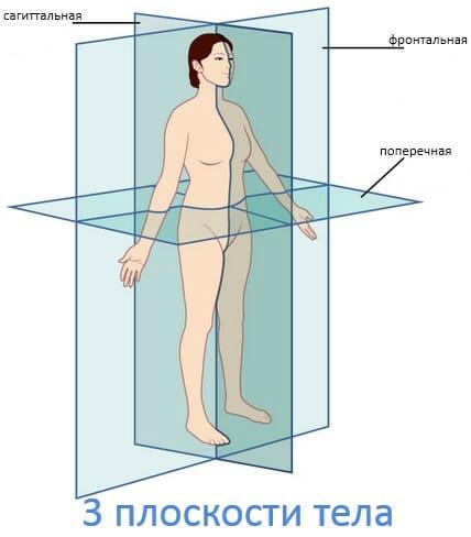 3 плоскости тела человека