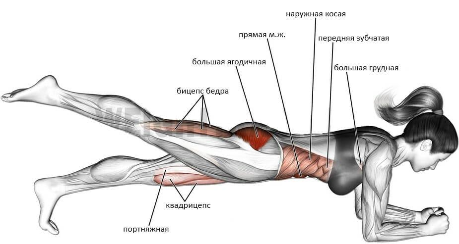 Планка на одной ноге мышцы