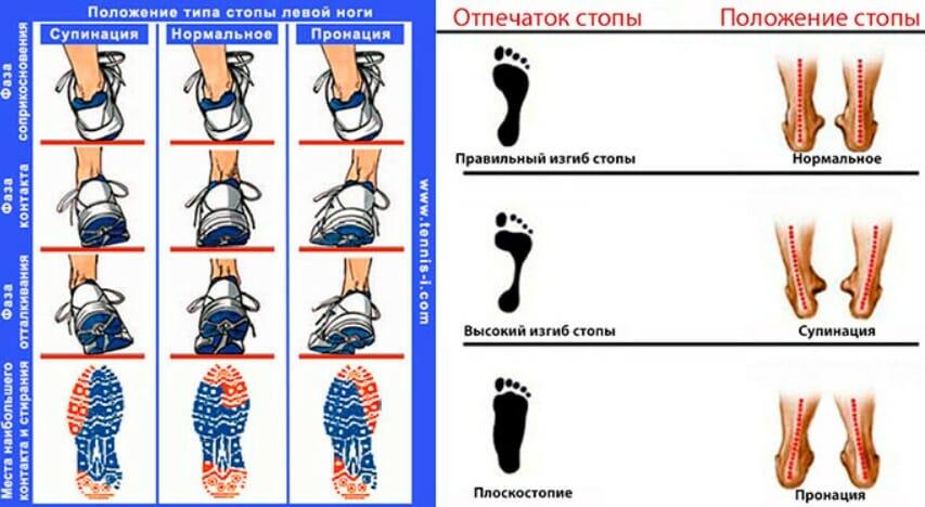 анатомическая терминология: супинация и пронация стопы