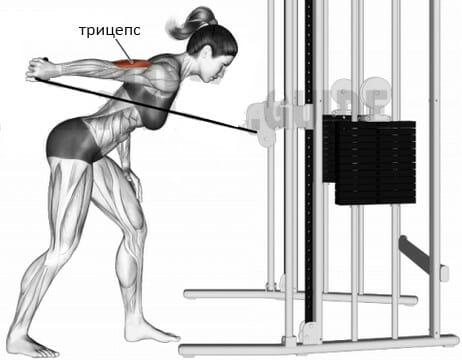 Отведение руки назад на блоке мышцы