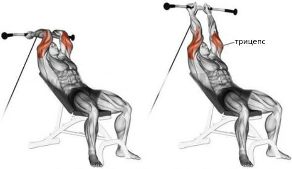 Разгибание рук на блоке из-за головы сидя на наклонной скамье мышцы